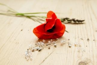 heiraten-auf-usedom (23 von 67)